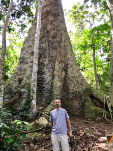 Mike tree